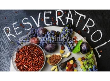 Resveratrolo: a cosa serve, benefici e controindicazioni
