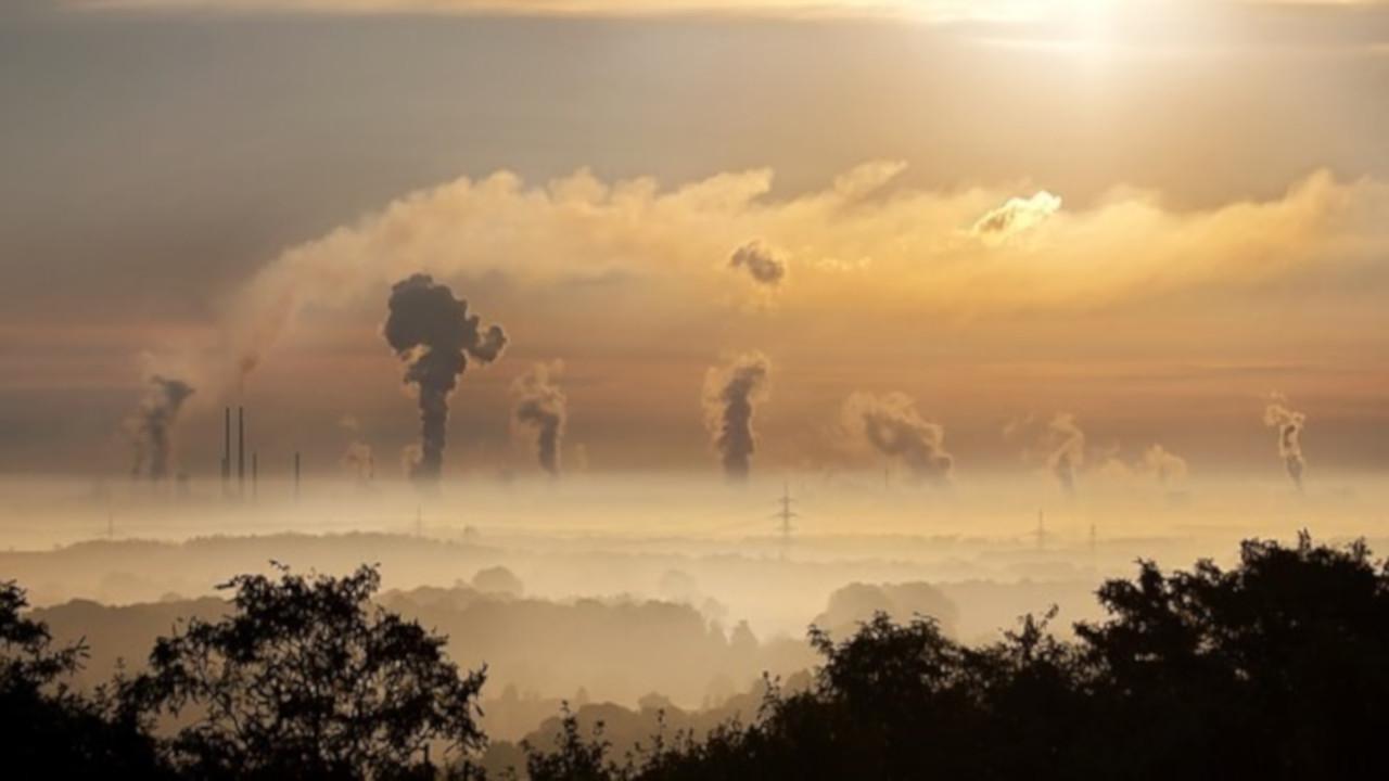 Alimentazione in città: come proteggerci dall'inquinamento